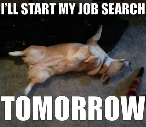 Job Hunt Meme - are you prepared for the fall hiring season personal touch career services