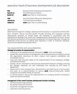 Sample Business Development Job Description
