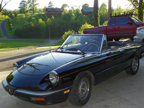 1985 Alfa Romeo Spider by 1985 Alfa Romeo Spider For Sale
