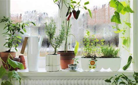 Ответы почему запотевают окна на кухне? ?