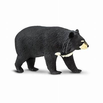 Bear Moon Safari Ltd Wildlife Orso Asiatico