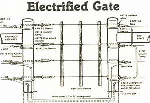 Everything You Need To Know About Electric Fencing