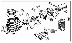 Hayward Super Pump Ii Parts Diagram  Full Rated Motors