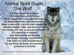 Wolf Animal Spirit Quotes. QuotesGram
