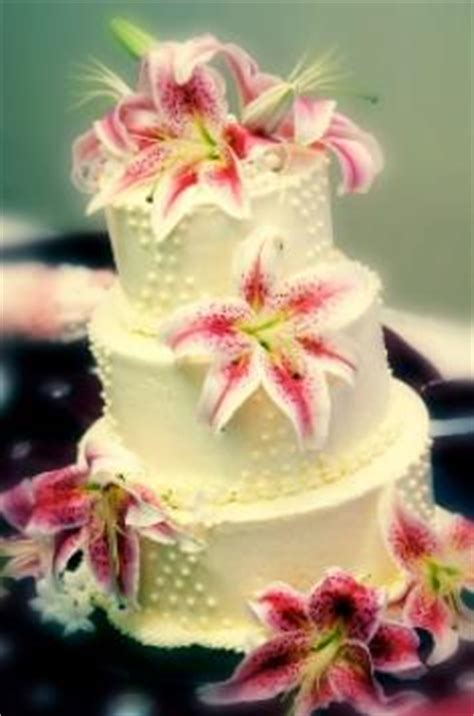 gallery  exotic wedding cakes lovetoknow