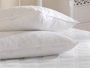 White goose feather and down cotton cover pillow pair for Buy goose down pillows
