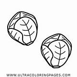 Brussel Sprouts Coloring sketch template