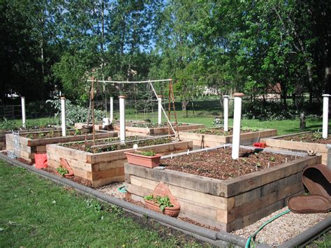 Backyard Worm Farm by My Raised Veggie Garden Beds With Worm Farming Right In