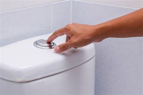 the flushing toilet flushable wipes thriftyfun