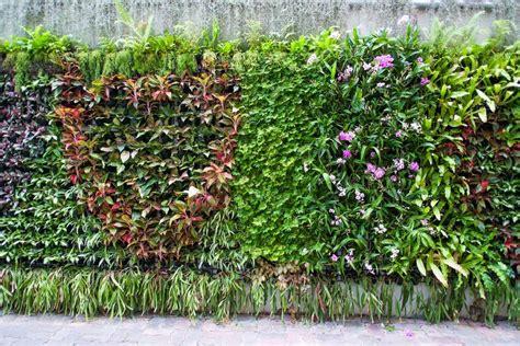 Einen Vertikalen Garten Anlegen › Moebeltippsch