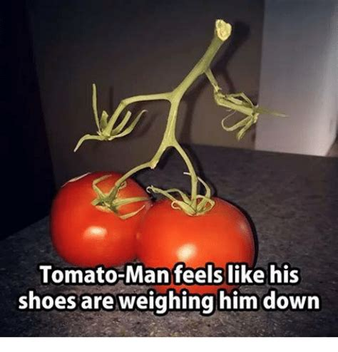 Tomato Meme - tomato meme 28 images image tagged in luck tomato imgflip tomato memes best collection of