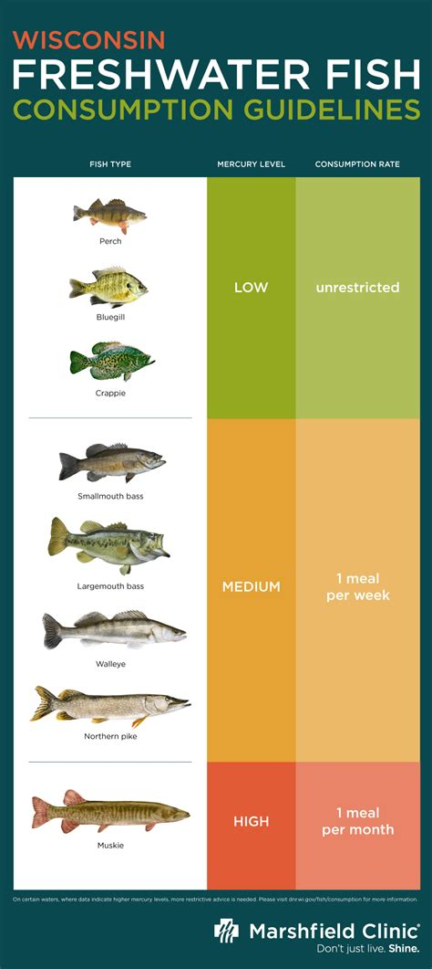 mercury levels  freshwater fish