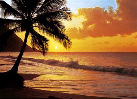 """Photo Wallpaper Murals """"pacific Sunset Beach"""" Wall Mural"""