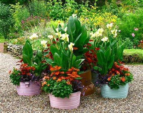 schöne pflanzen für den garten pflanzgef 228 223 e im garten f 252 r eine coole atmosph 228 re