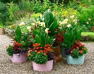Schöne Pflanzen Für Den Garten : pflanzgef e im garten f r eine coole atmosph re ~ Michelbontemps.com Haus und Dekorationen