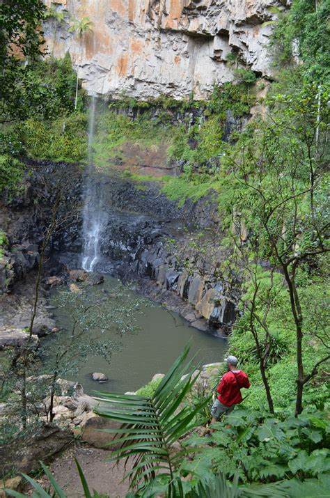 Things to do | Springbrook National Park | Parks and ...