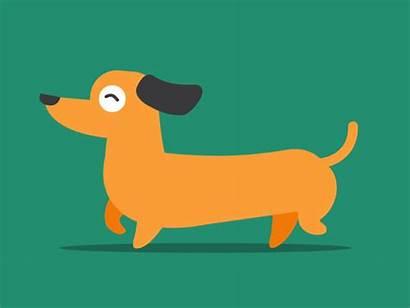 Dog Dachshund Happy Dribbble Enjoy
