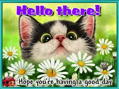 Hello Hi Card Very Greetings Cards Pet