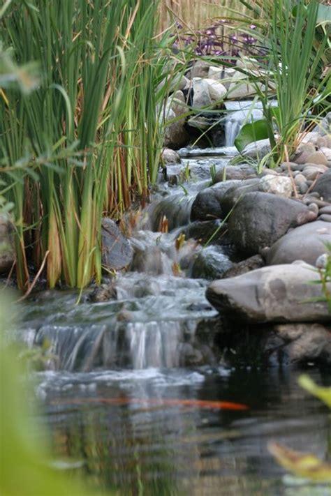 simple backyard pond waterfalls