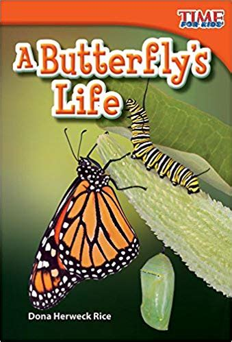 butterflies life preschool mom