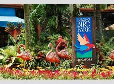 Jurong Bird Park Singapore With Transfers Planet Rovers
