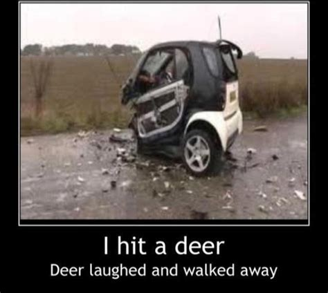 smart car smart car funny real life pinterest