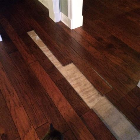 Wood Floor Cupping Prevention by Repairing Preventing Floor Cupping From Moisture