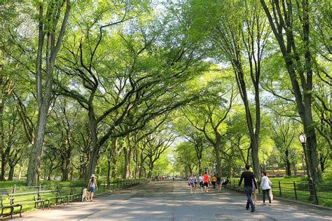 What's Your Favorite New York City Park?  Curbed Ny