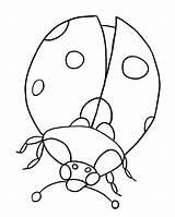 Coloring Bug Pages Lady Printable Ladybug sketch template