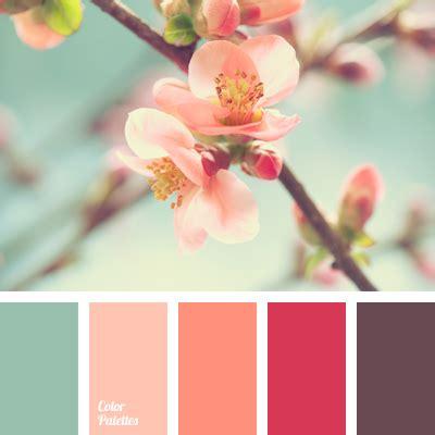cherry blossom color pastel blue and coral color palette ideas