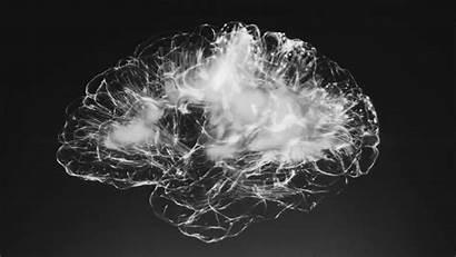 Brain Fog Fix Why Ways Plus