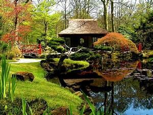 beautiful japanese garden Garden - Water Gardens Pinterest