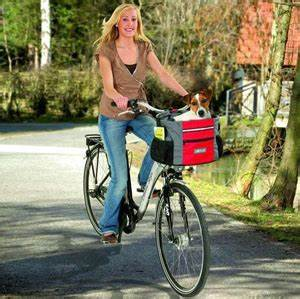 Hundekorb Fahrrad Hinten : hundekorb fahrrad hundekorb f rs fahrrad testsieger 2015 ~ Jslefanu.com Haus und Dekorationen