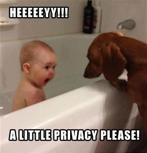 Funny Child Memes - funny kids taking a bath with dog
