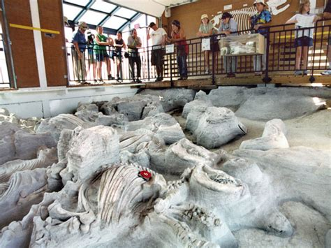 Ashfall Fossil Beds by The Best Road Trip According To Science