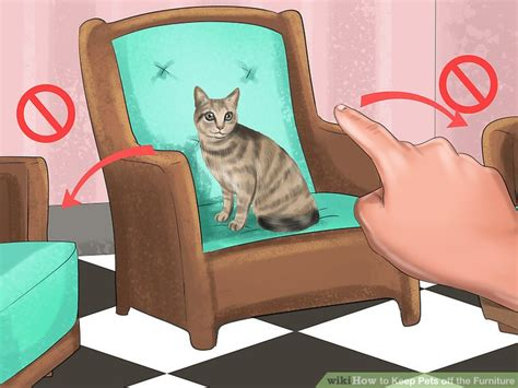 ways   pets   furniture wikihow