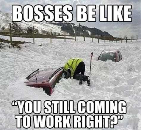 Blizzard Meme - the best of the juno blizzard memes funny pics memes and funny things