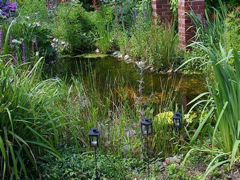 cuisine d été aménagement aménagement jardin installer un étang de jardin
