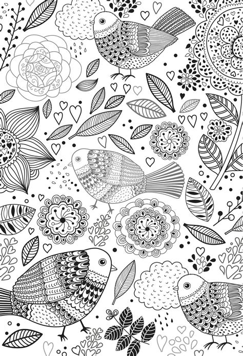 colouring books  adults   playroom