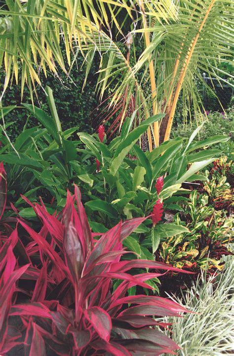 This Tropical Landscape In Boca Raton, Florida Features Ti