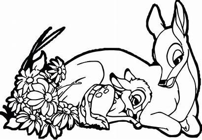 Coloring Pages Mother Bambi Drawing Deer Mom