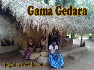 Gama Gedara Authentic Sri Lankan VillageApe Gama