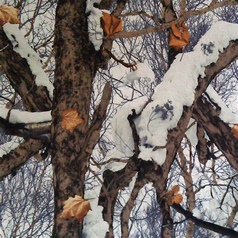Snow Camo Wallpaper Wallpapersafari