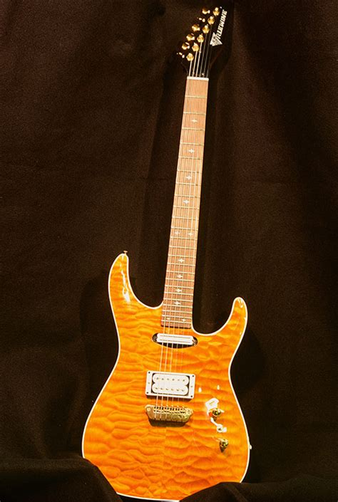 Automatic Bid Erlewine Guitars Custom Guitars