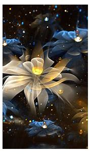 abstract, Fractal, Flowers, Fractal Flowers Wallpapers HD ...
