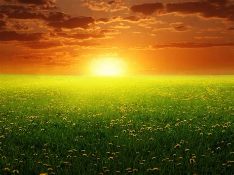 peaceful spring sunset  wide wallpapers