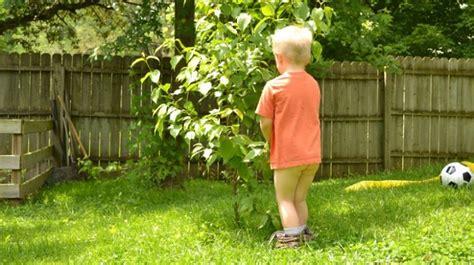 qui pisse sur le canap en allemagne les enfants qui font pipi sur les arbres
