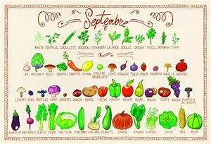Claire Sophie Lozia : le calendrier des fruits l gumes de la rentr e septembre ~ Melissatoandfro.com Idées de Décoration