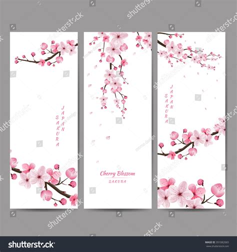 10 best cards cherry blossom cherry blossom collection greeting cards seamless stock