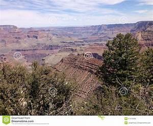Blumenarten Az Mit Bild : ansicht grand canyon s arizona mit gesteinsschichten und klippen stockfoto bild 57413038 ~ Whattoseeinmadrid.com Haus und Dekorationen